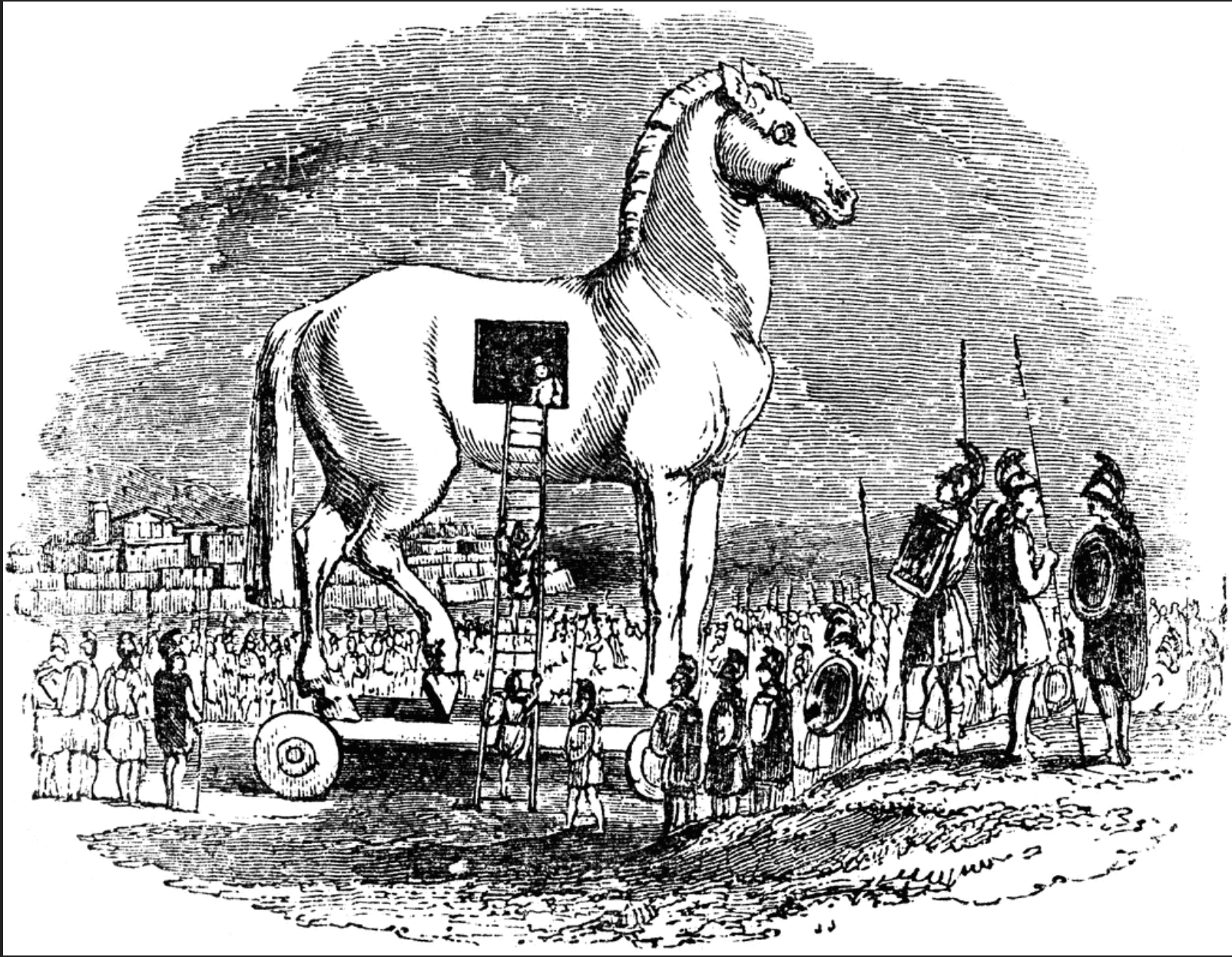 A close up of a horse Description automatically generated